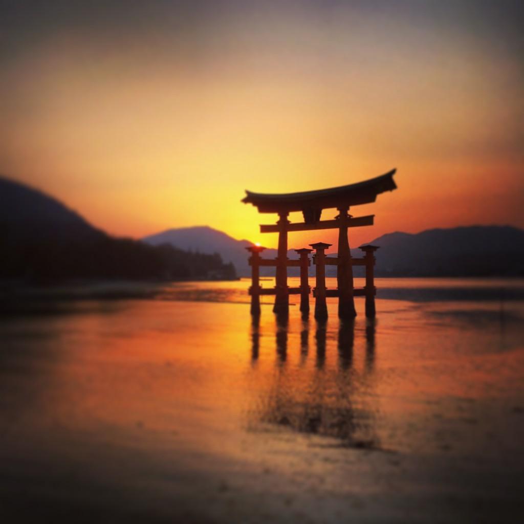 大鳥居の夕陽