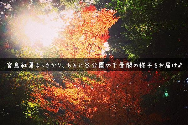 宮島 紅葉