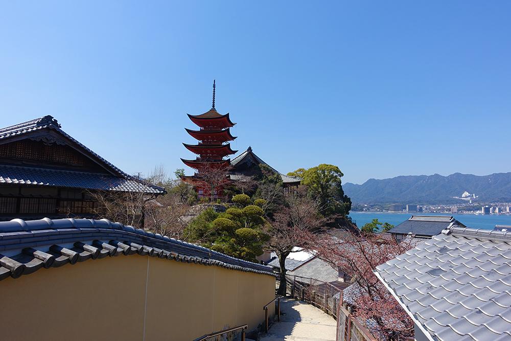 光明院近くから見た五重塔の風景