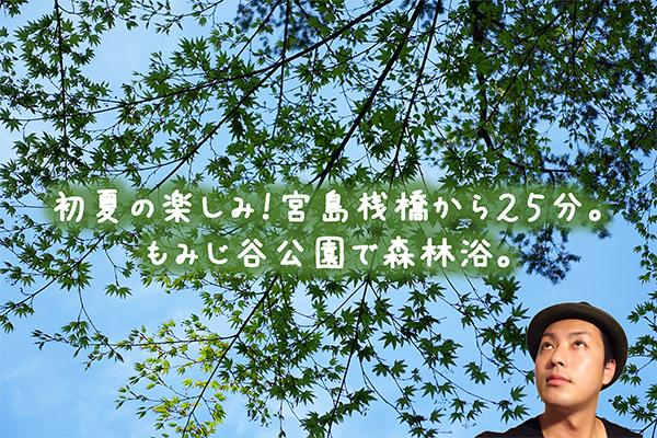 宮島 新緑