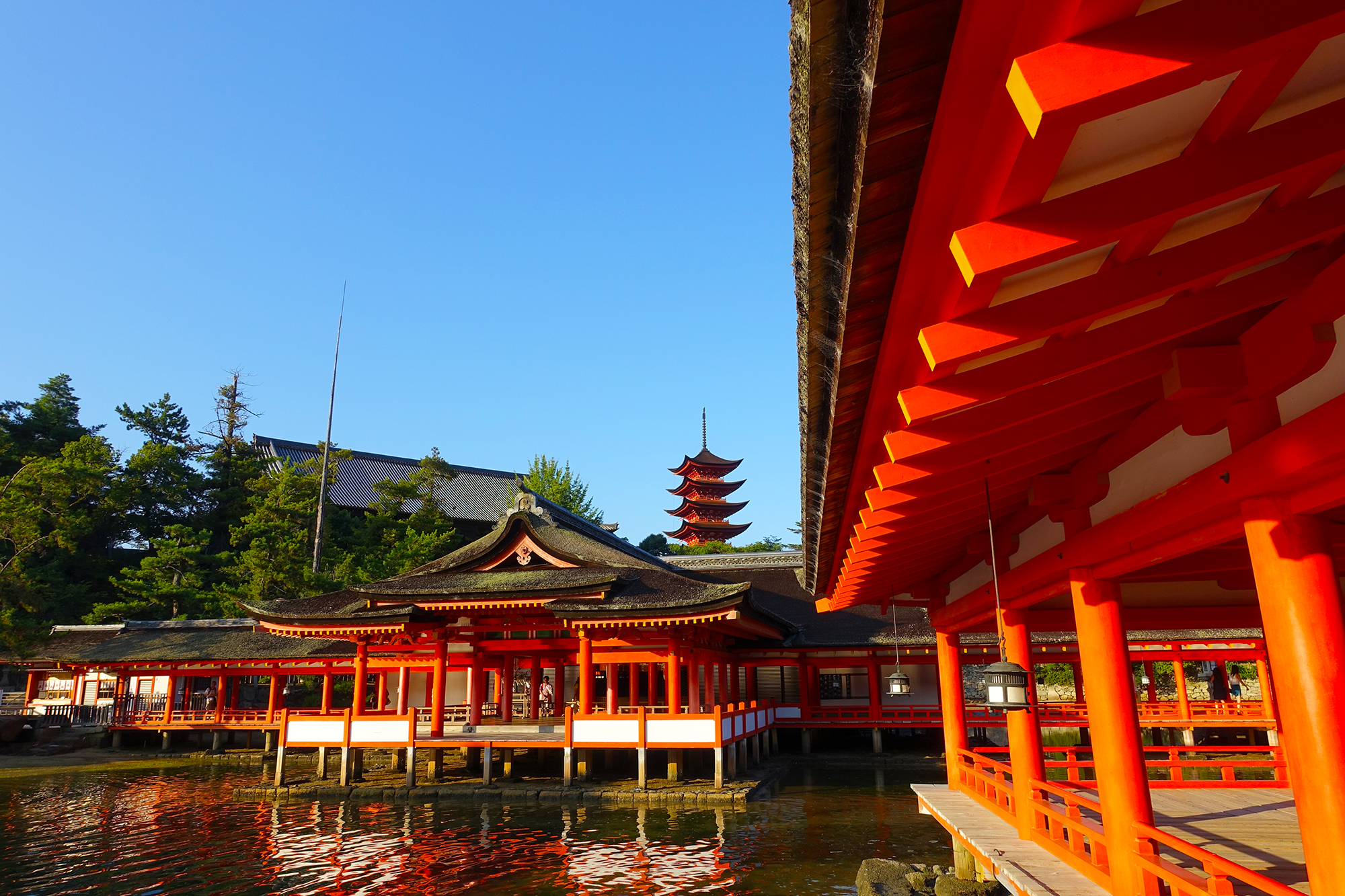嚴島神社 (45)
